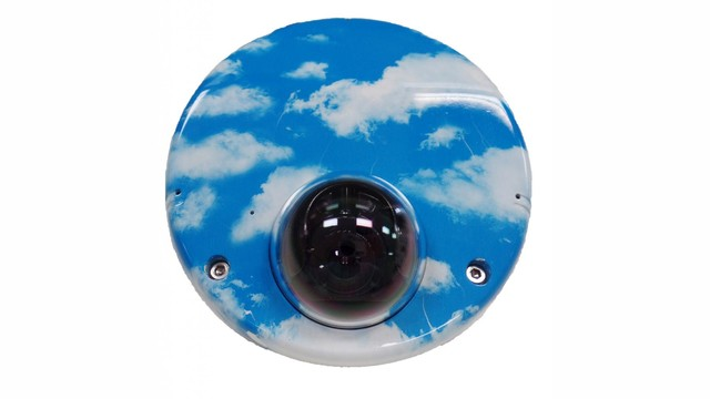 Custom Finish  IP Video Cameras