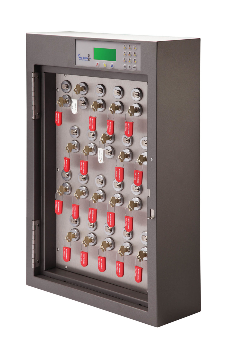 Institutional Application Of Key Cabinets