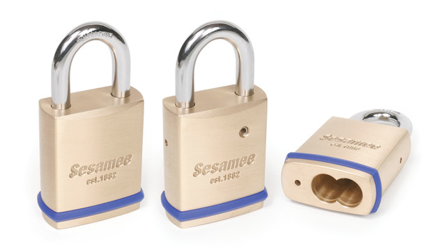 Sesamee® SFIC