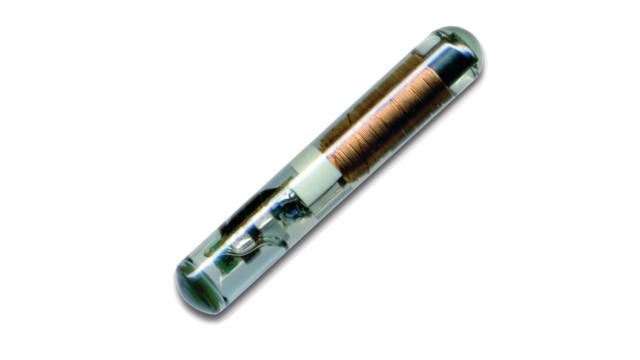 AmpuoleTransponder.jpg