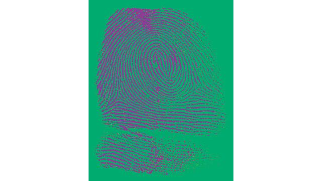 fingerprint_10749089.tif