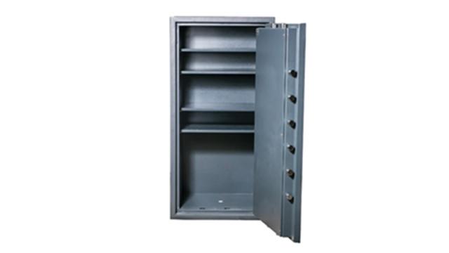 img-1053-edit-hollon-safe-500x_11351743.psd